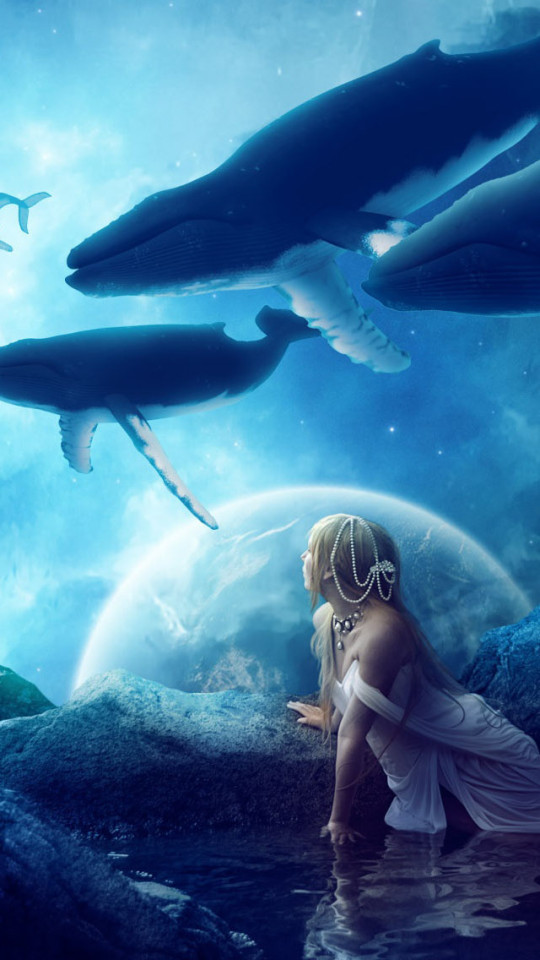 Free Download Whales Dream Wallpaper Iphone Wallpapers