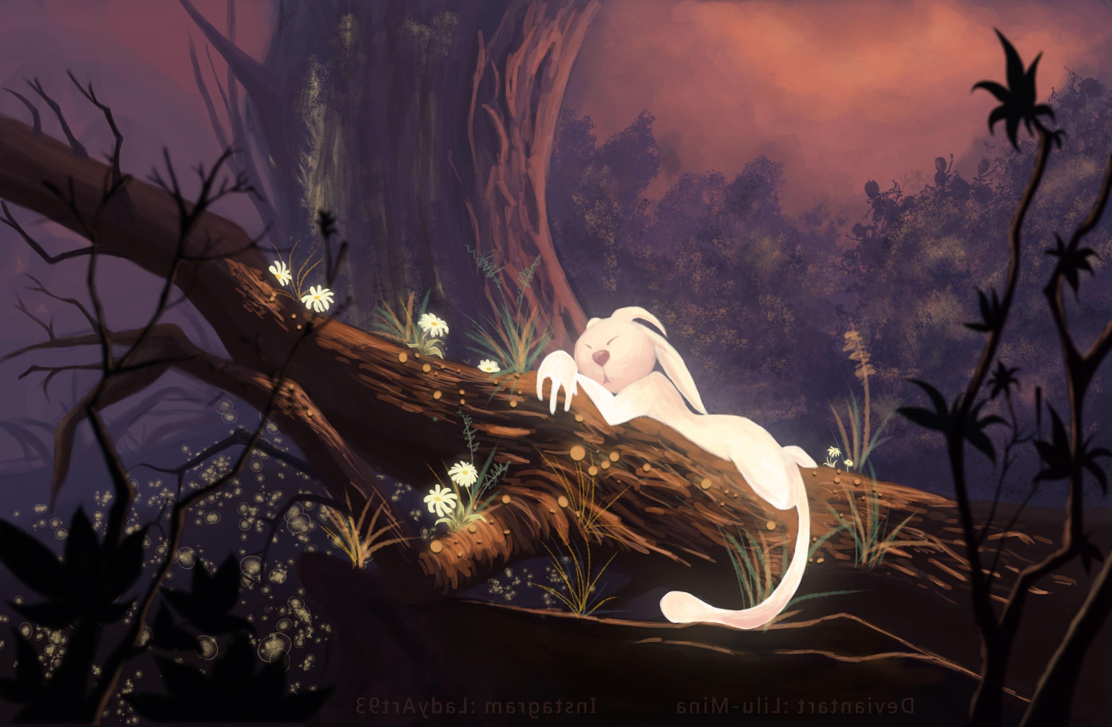 video Games, Ori And The Blind Forest Wallpapers HD ...