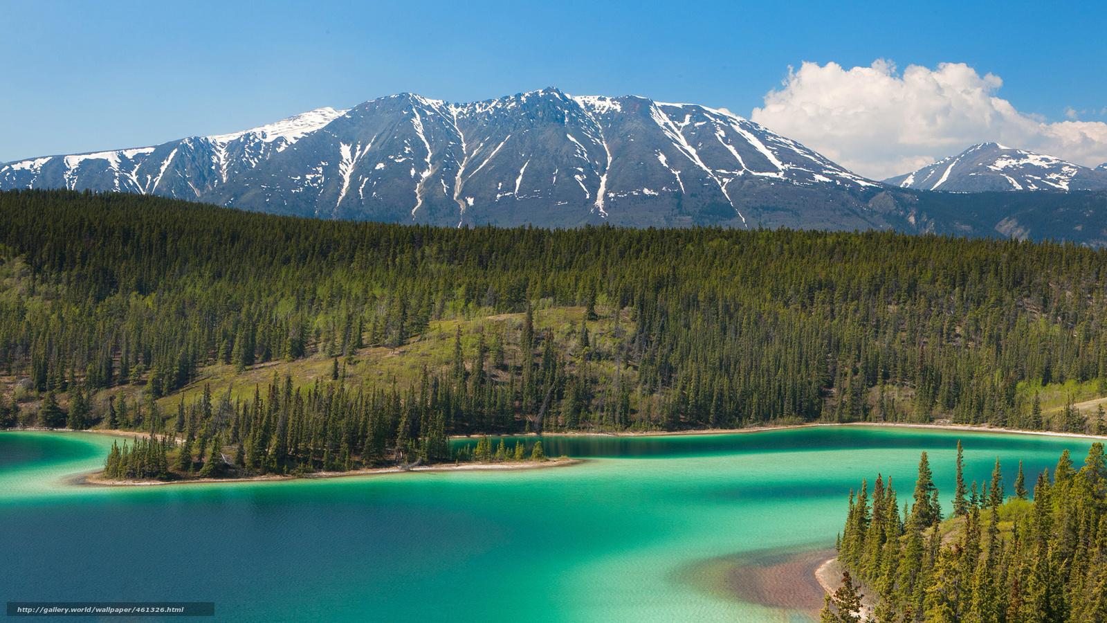wallpaper Mountains lake alaska Trees desktop wallpaper 1600x900