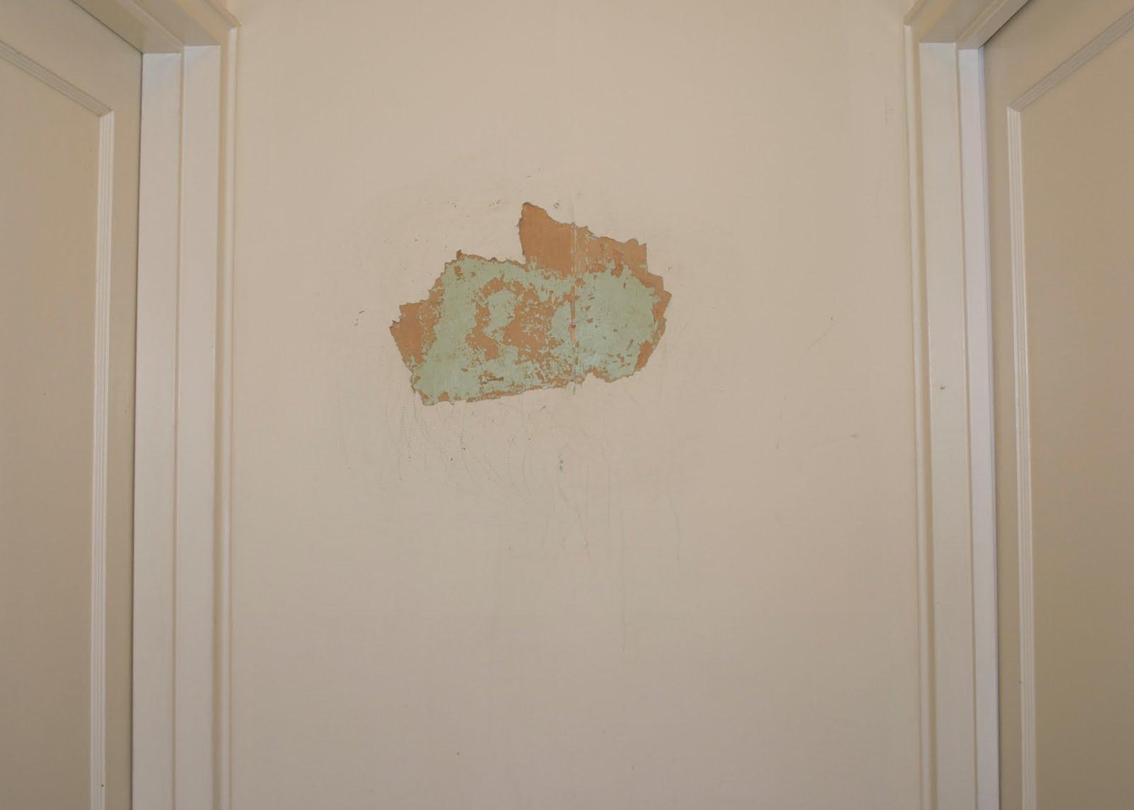 Best Wallpaper Seam Repair Adhesive Wallpapersafari