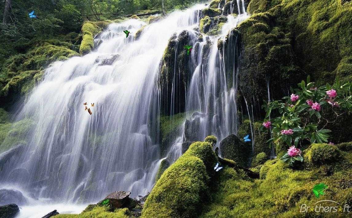 Waterfall Screensaver Exotic Waterfall Screensaver 10 Download 1145x712