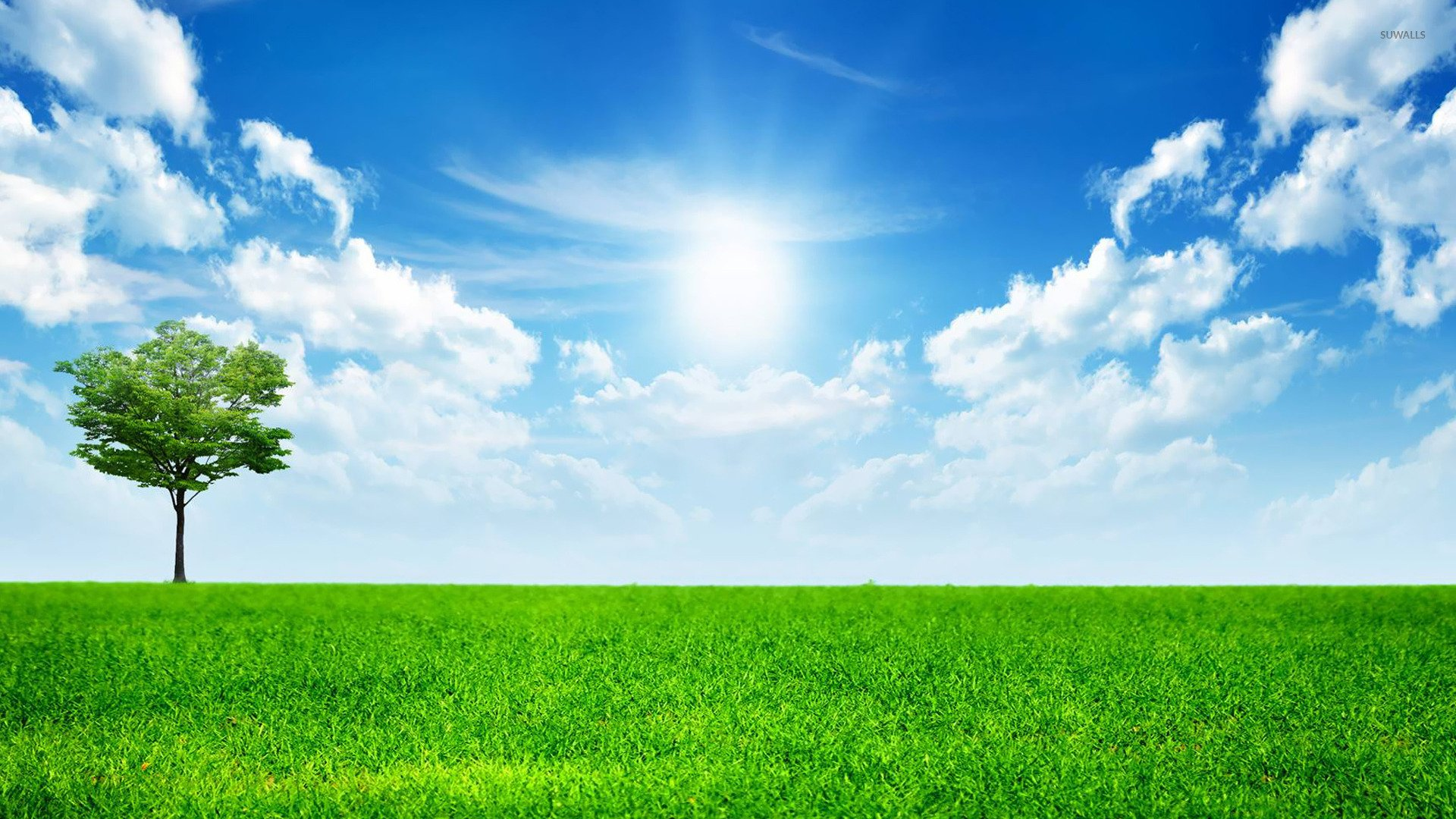 Sunny blue sky wallpaper   Nature wallpapers   14782 1920x1080