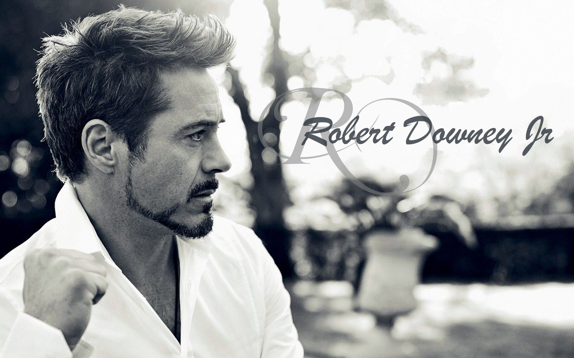 Robert Downey Jr Wallpapers High Resolution and Quality Download 1920x1200