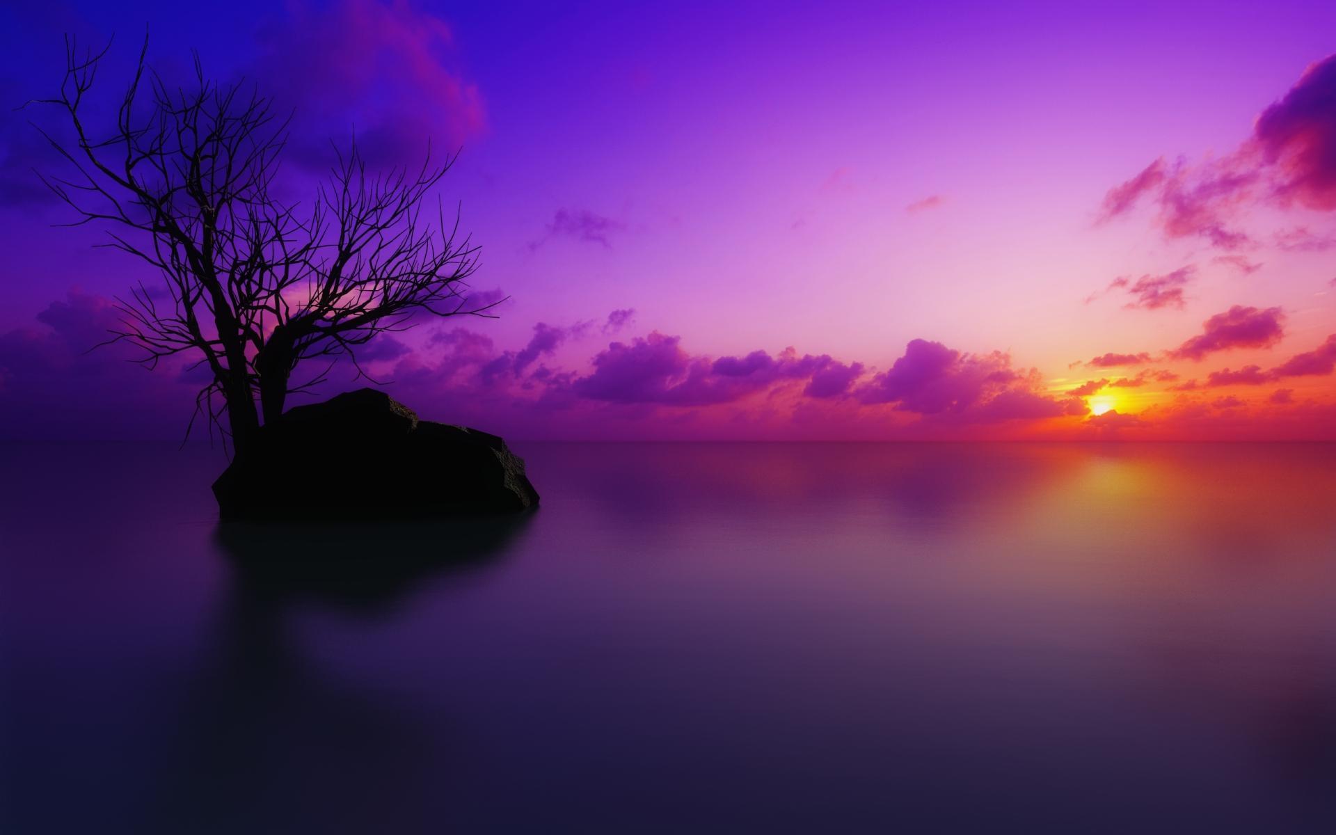 Pink Sunset Backgrounds wallpaper wallpaper hd background desktop 1920x1200