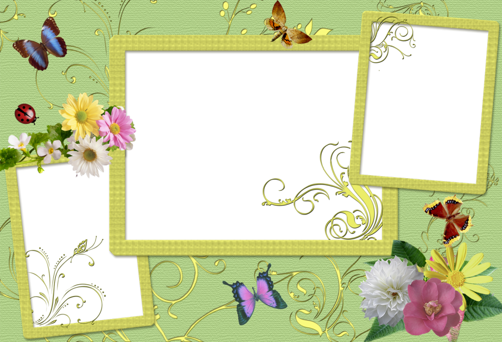 beauty powerpoint backgroundswallpapers download ppt backgrounds