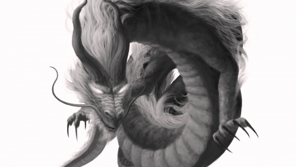 dragon black and white images   Fresh Wide Wallpaperscom FRESH WIDE 600x338