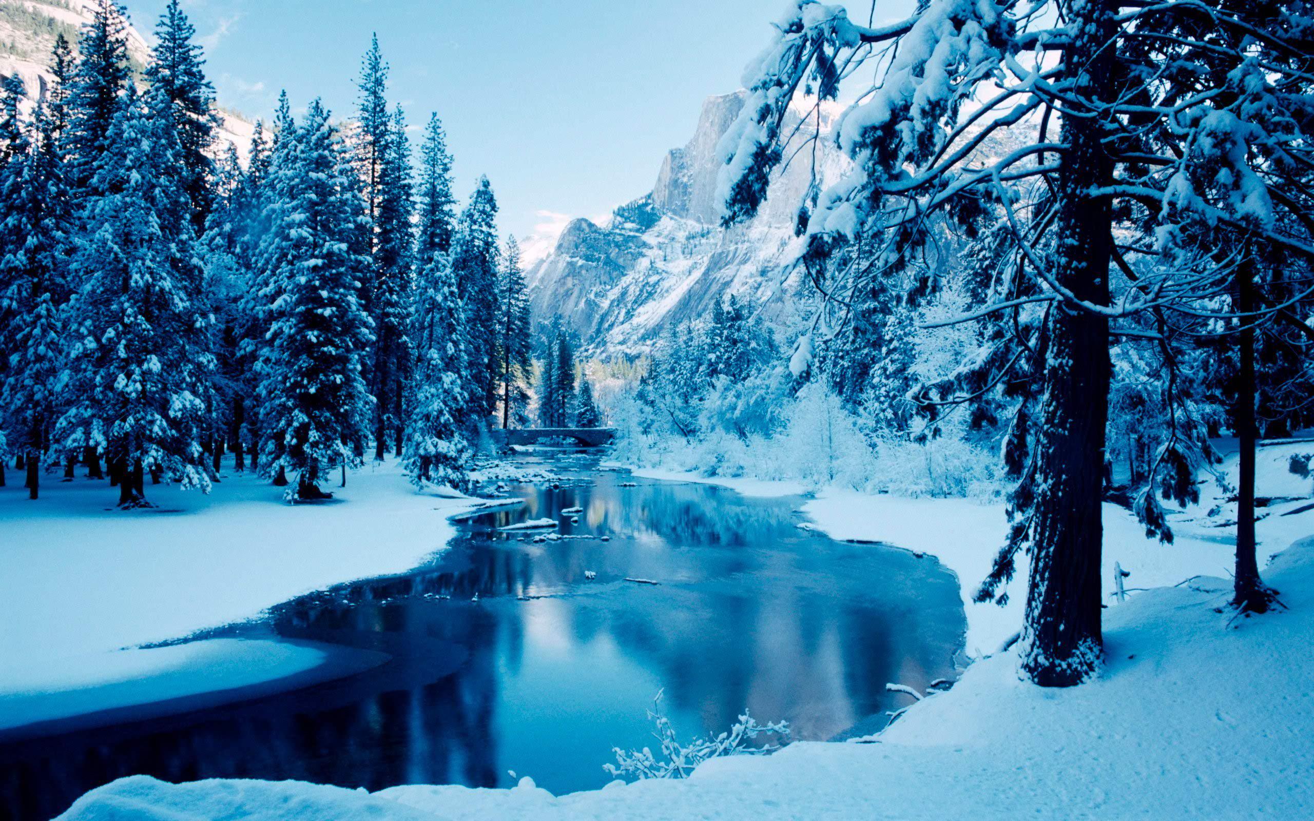 Winter Scenes Desktop Wallpapers Toptenpackcom 2560x1600