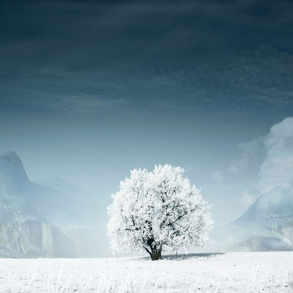 Beautiful Winter Wallpapers For IPads