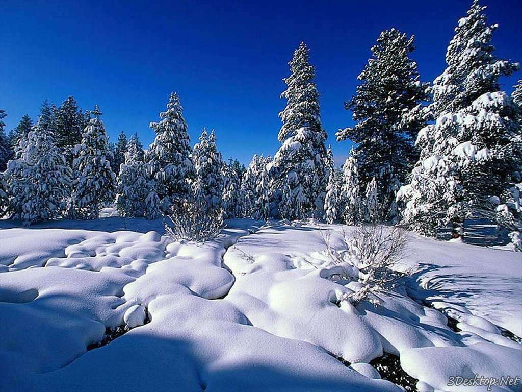 New Wallpapers 2015 3D Animated Wallpapers 2015 1024x768
