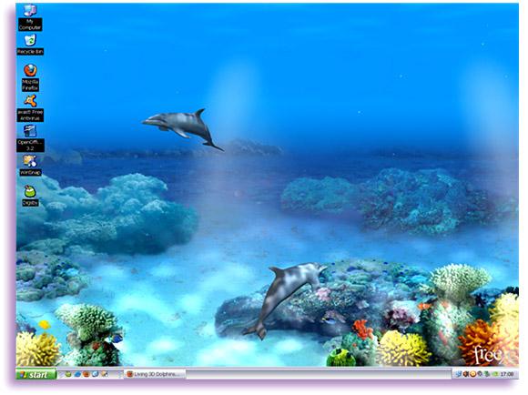 3D Desktop Wallpaper Dolphins   wwwwallpapers in hdcom 580x434