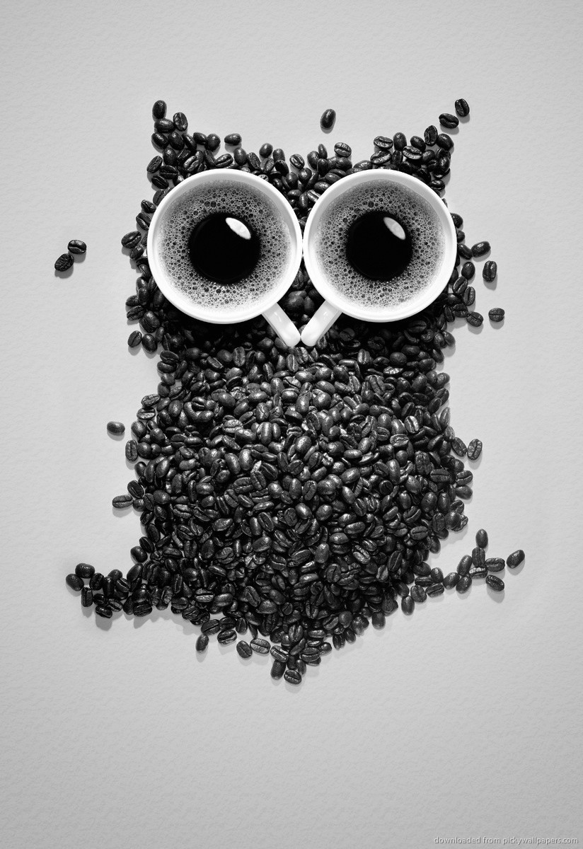 Owl Screensavers For Kindle Hd   MediafireFixCom 824x1200