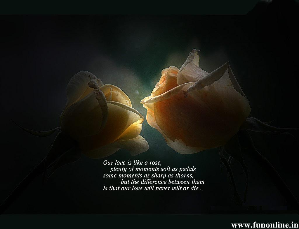 Love Poems Wallpapers Beautiful Love Poems HD Wallpapers For 1024x786