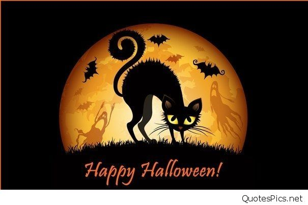 Best Happy Halloween cartoons gif wallpapers 2016 2017 605x402