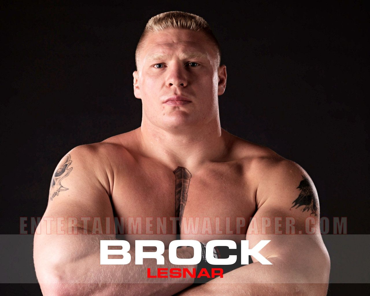 Brock Lesnar Logo Wallpapers - WallpaperSafari