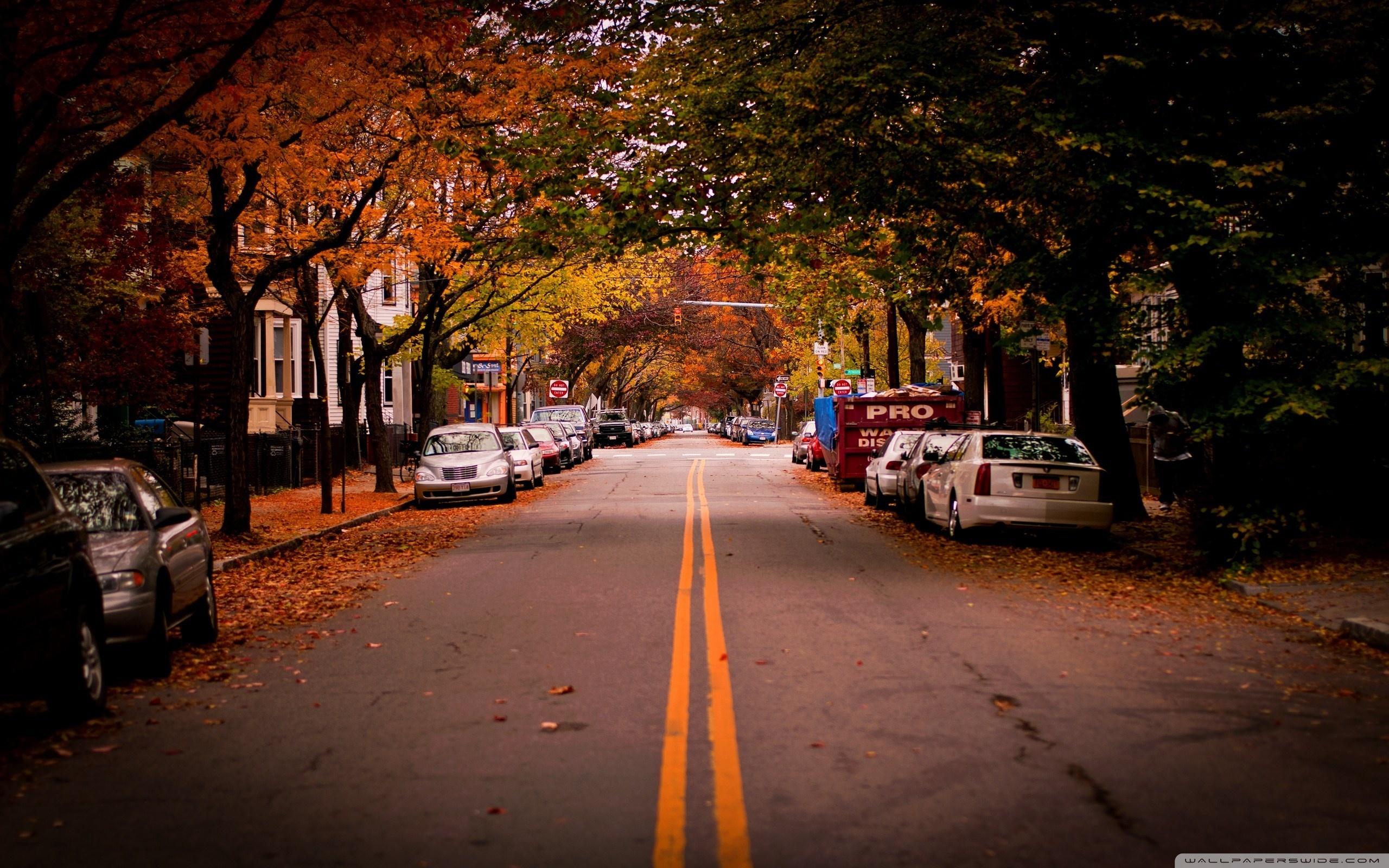 American Town Autumn 4K HD Desktop Wallpaper for 4K Ultra HD 2560x1600