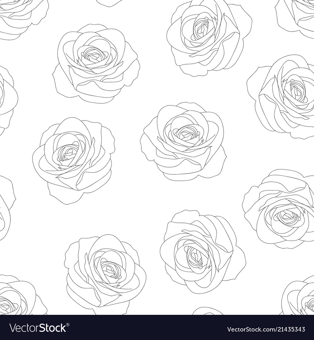 Rose outline background Royalty Vector Image 1000x1080