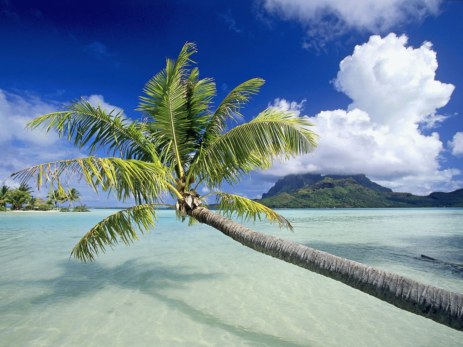 Filename : HD beach scenery wallpaper tropical island 2 Updated : 2011 ...