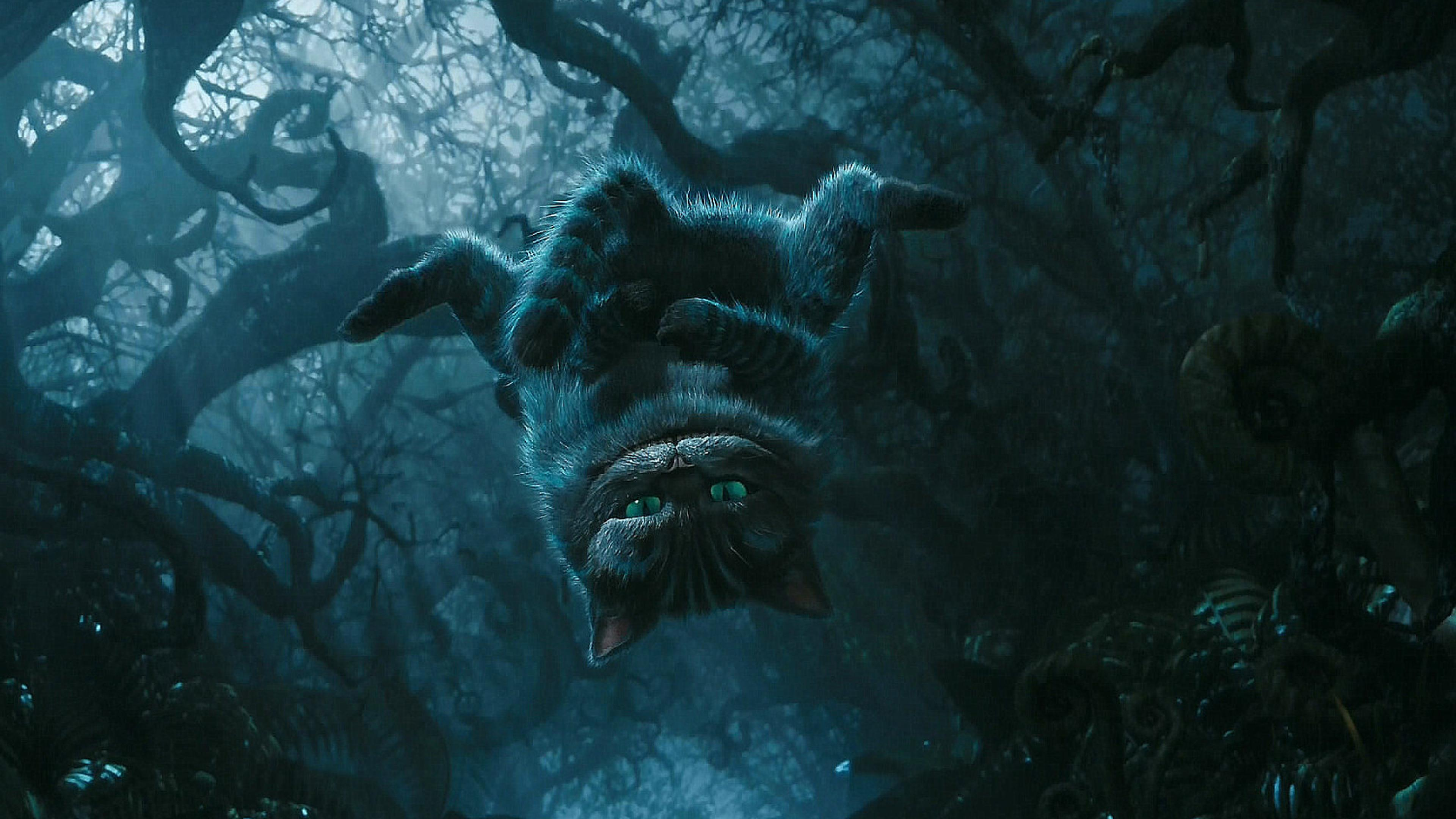 Cheshire Cat Wallpapers Download 3840x2160