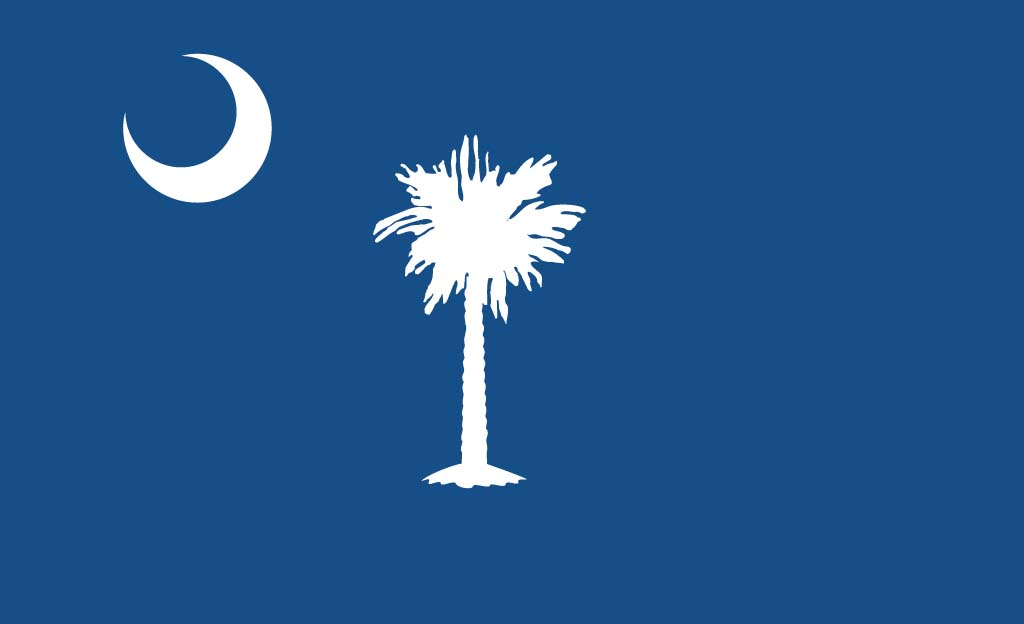 the way i did here s the south carolina flag 1024x624