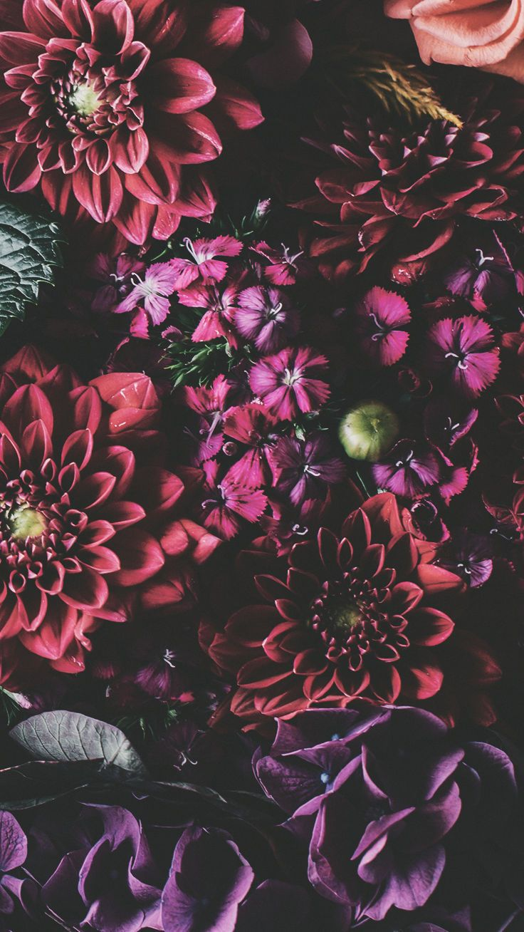 21 Pretty Wallpapers For Your New iPhone Xs Max Floral wallpaper 736x1308