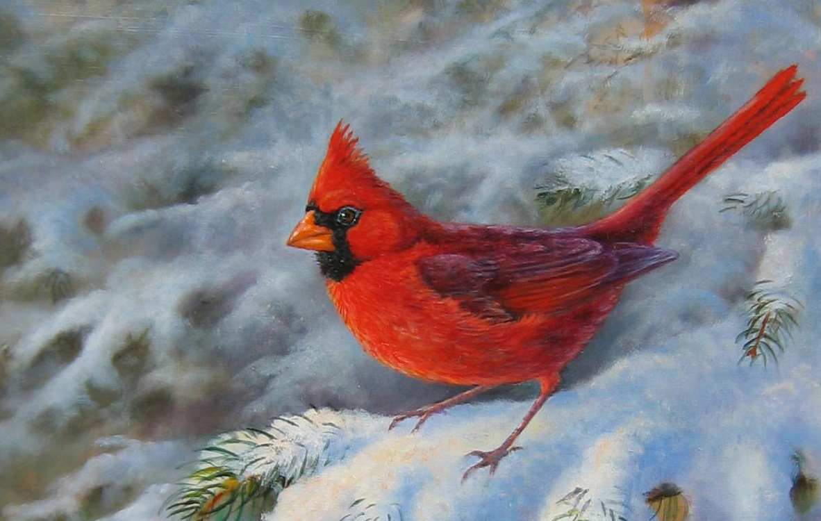 Winter Cardinal Images wallpaper wallpaper hd background desktop 1182x750