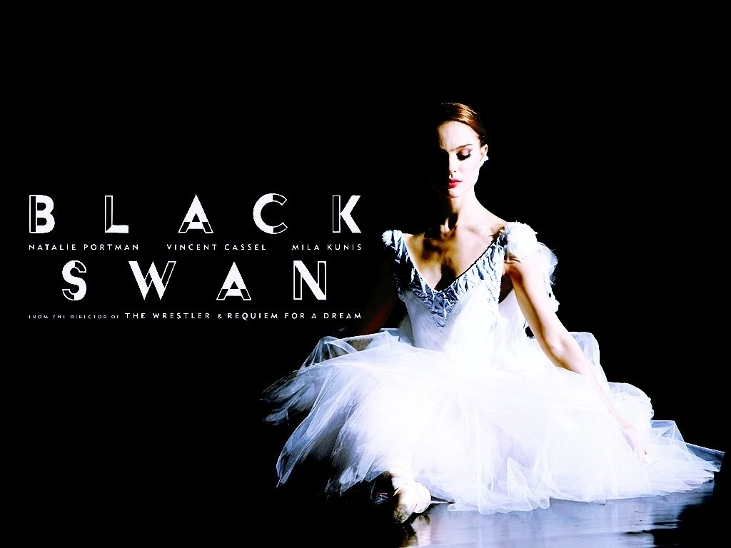 Black Swan Wallpaper   Black Swan Wallpaper 19953064 1024x768