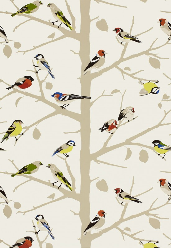 Sarahs House Powder Room Bird Wallpaper Source   The Inspired Room 550x800