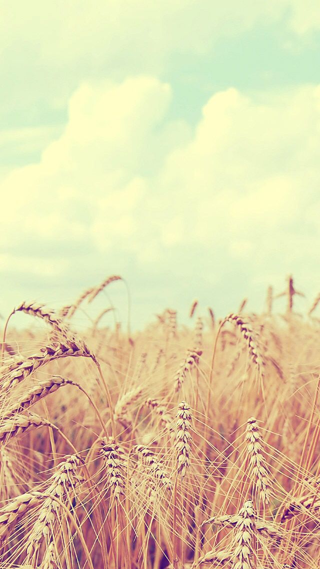Country girl wallpapers for iphone wallpapersafari - Beautiful country iphone backgrounds ...