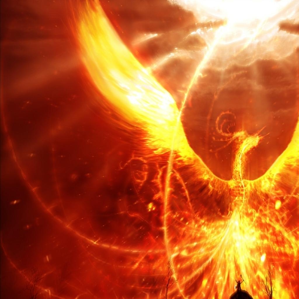 fantasy dragons phoenix 1280x800 wallpaper 10764download 1024x1024 1024x1024