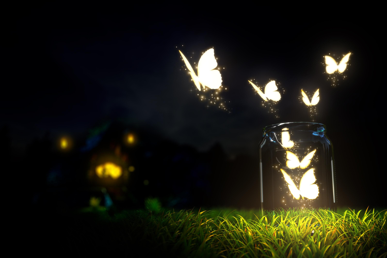 Glowing butterflies lighting in the dark   HD wallpaper 3000x2000