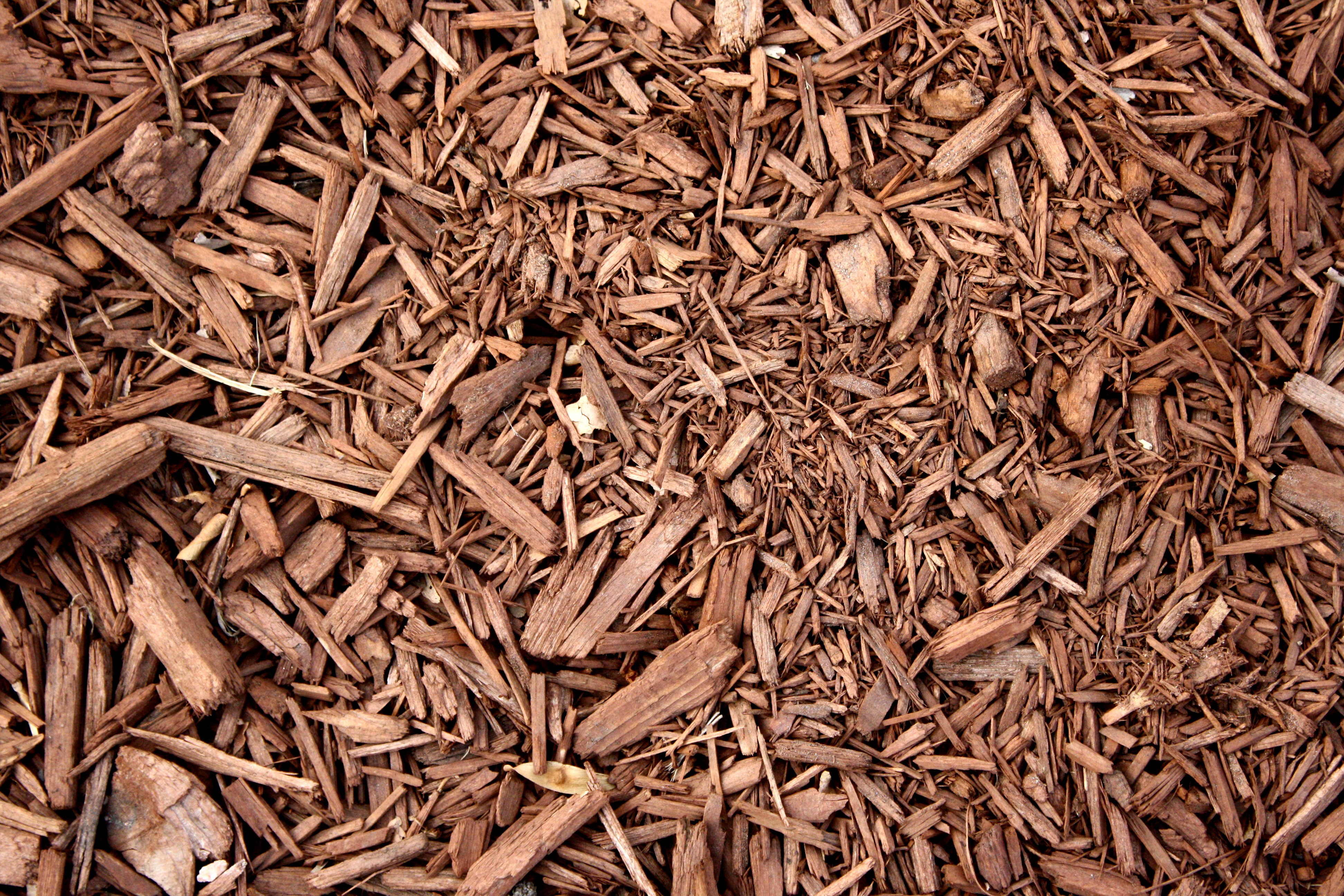 Brown Wood Chip Mulch Texture Picture Photograph Photos 3888x2592