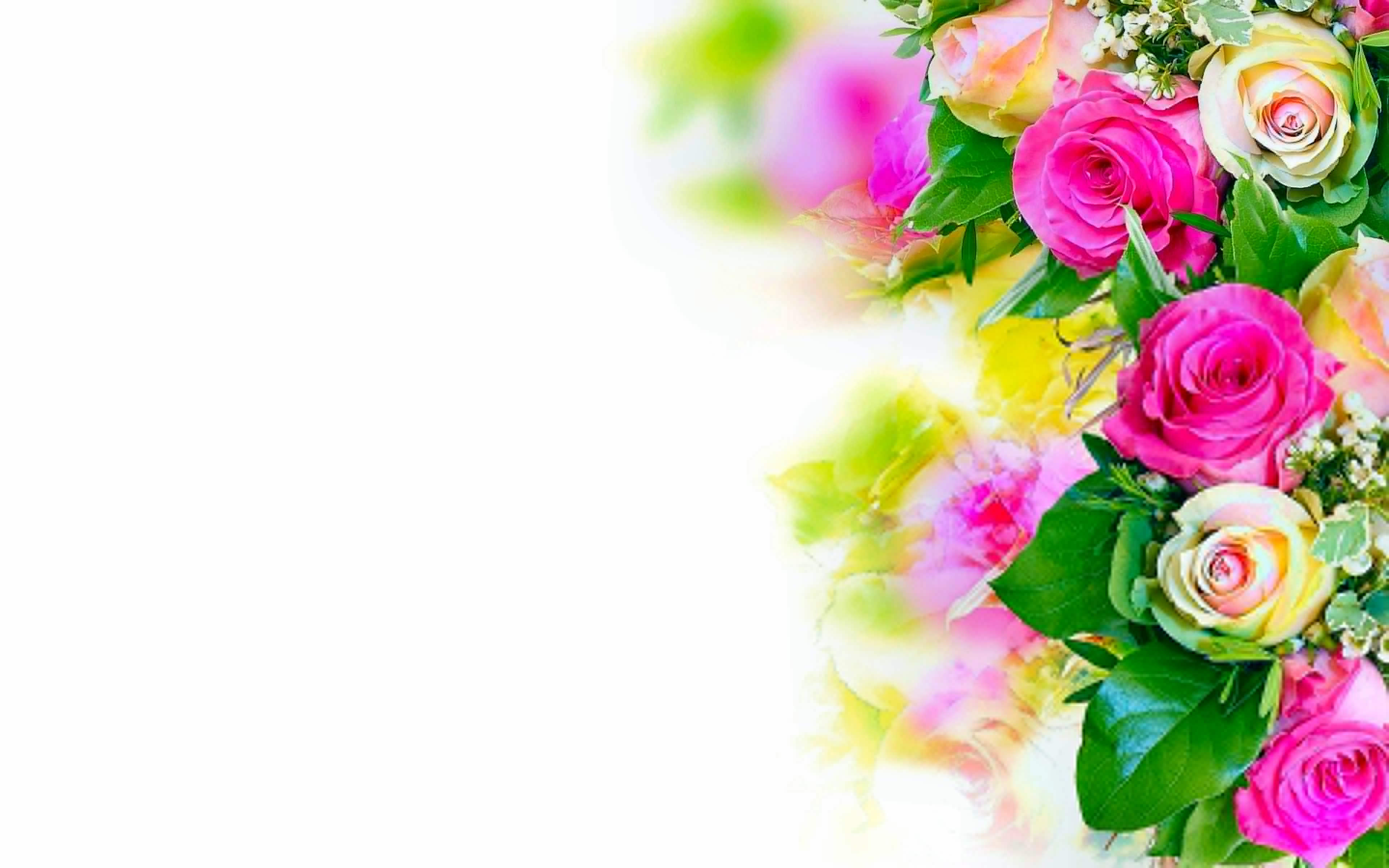 25 Roses Background Wallpapers Images Pictures 3840x2400