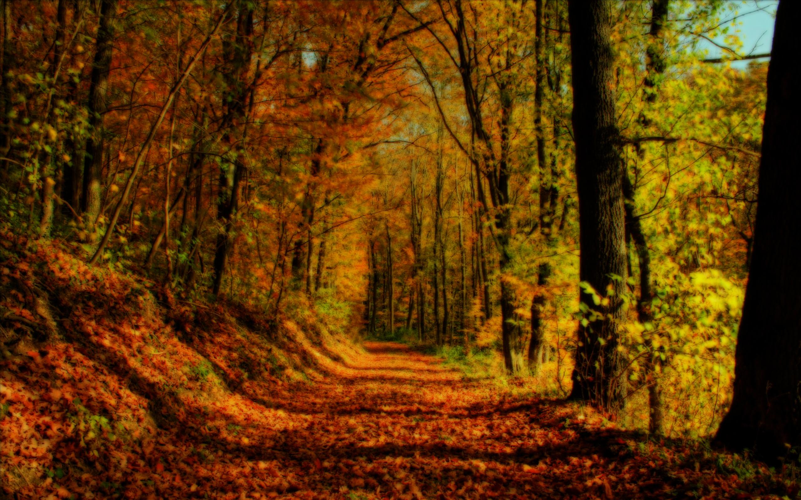 christian fall wallpaper - photo #41
