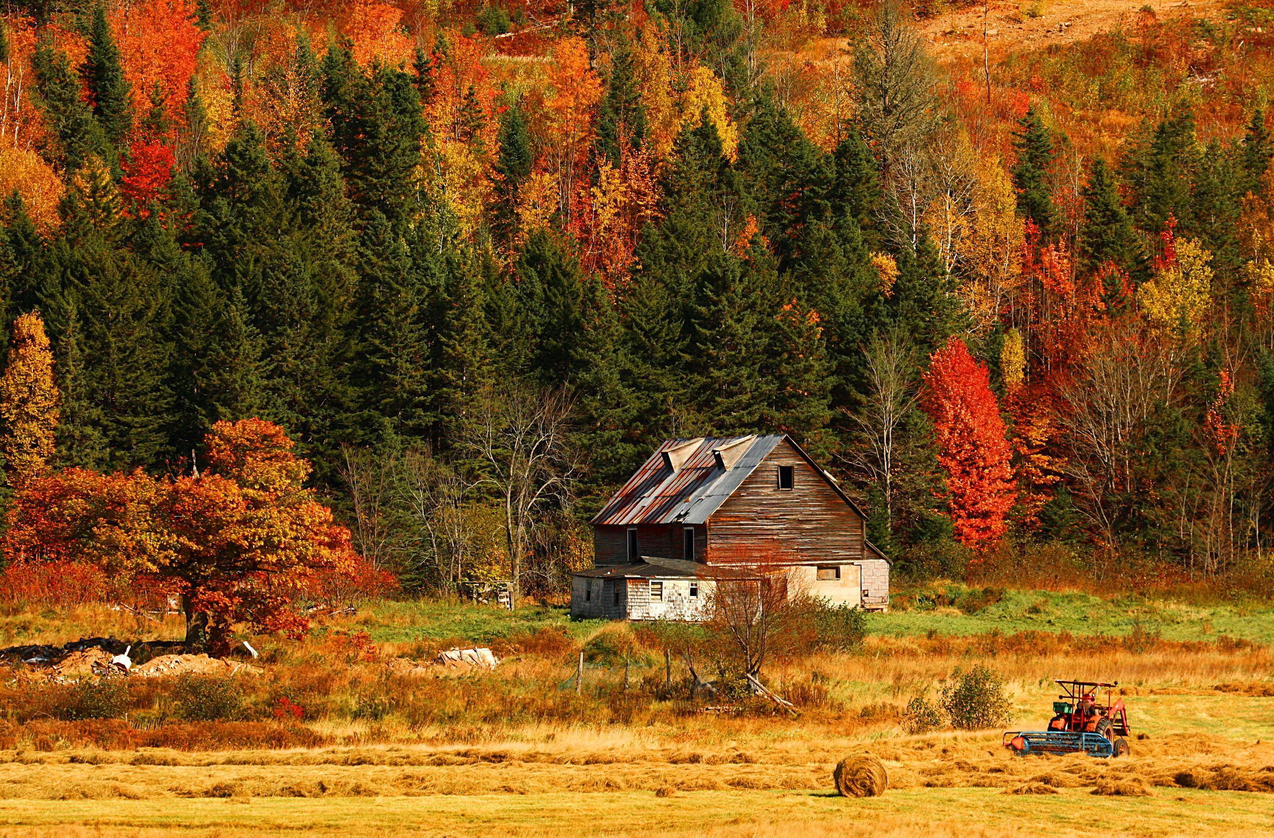 Autumn Mountains Backgrounds On Hd 2592x1706 Free Mountain Autumn Wallpapers Wallpapersafari