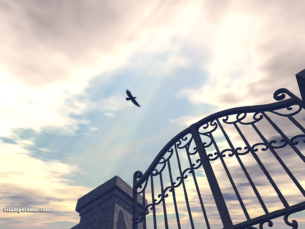 download bird gothic sun rays iron gate fence sky clouds fly 1024x768