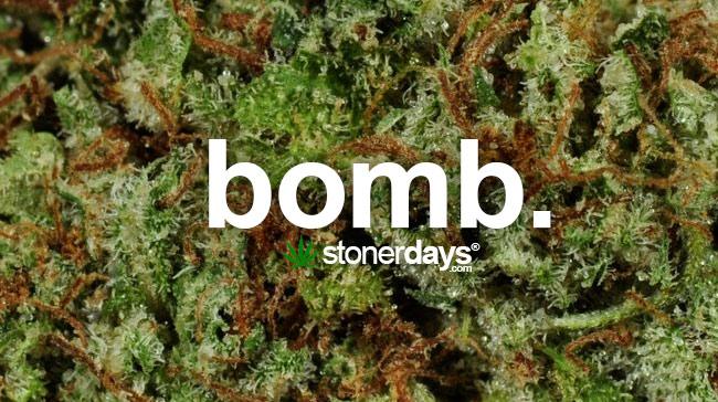 Free Download Weed And Blunts Wallpaper Bomb Marijuana Weedjpg 13