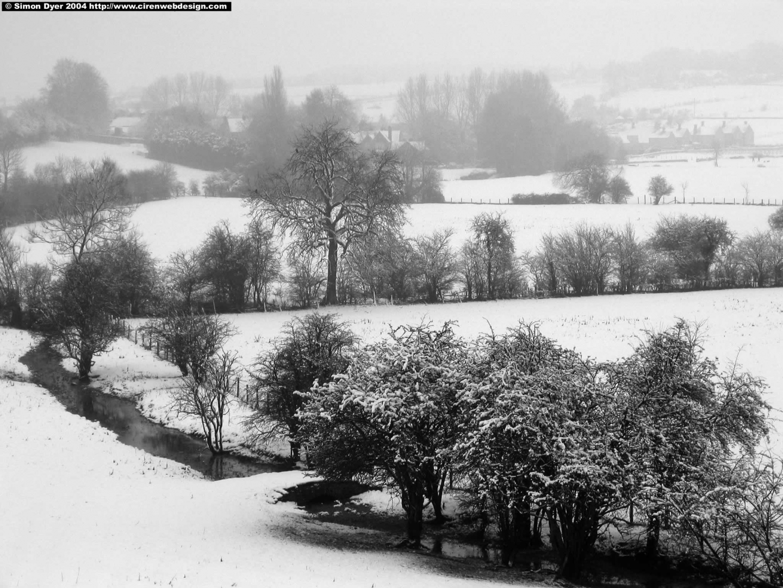 Black and white snowy landscape 2048 x 1536 wallpaper 1440x1080