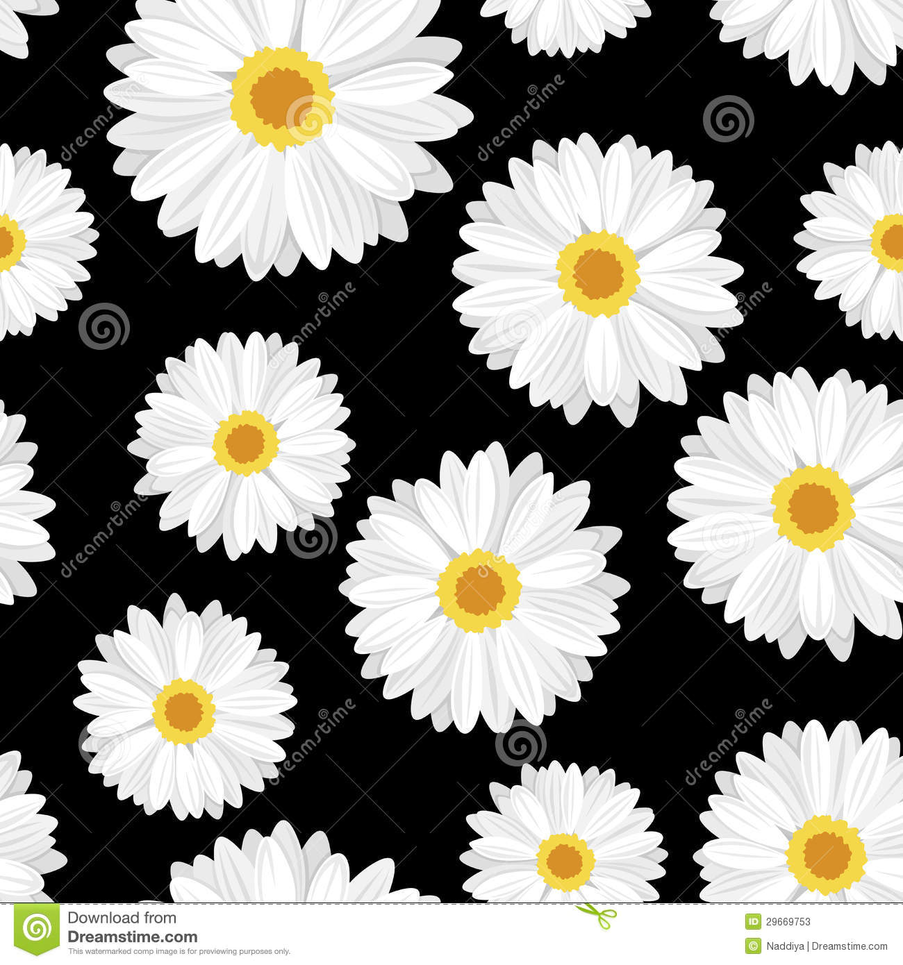 black and white daisy wallpaper wallpapersafari