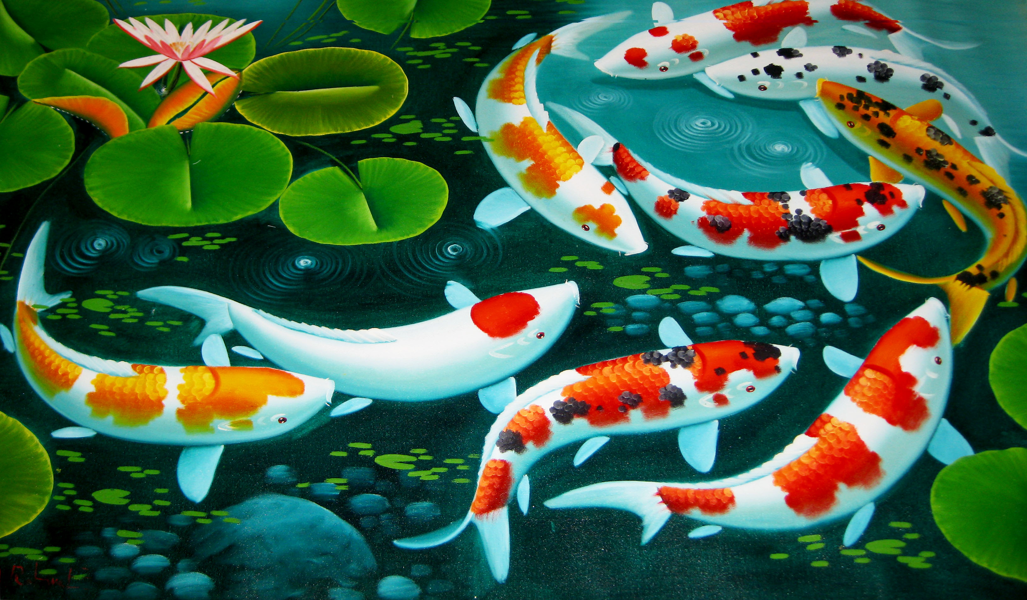 Koi pond wallpaper wallpapersafari for Koi fish in pool