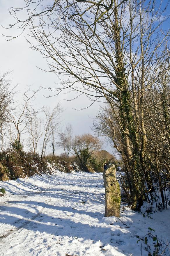 country winter scenes desktop background Quotes 584x880