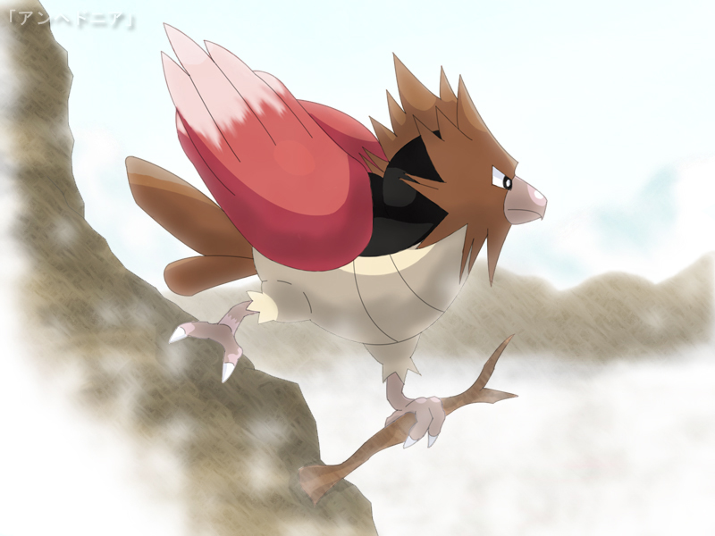 Spearow   Desolate Haven by roddz art 800x600
