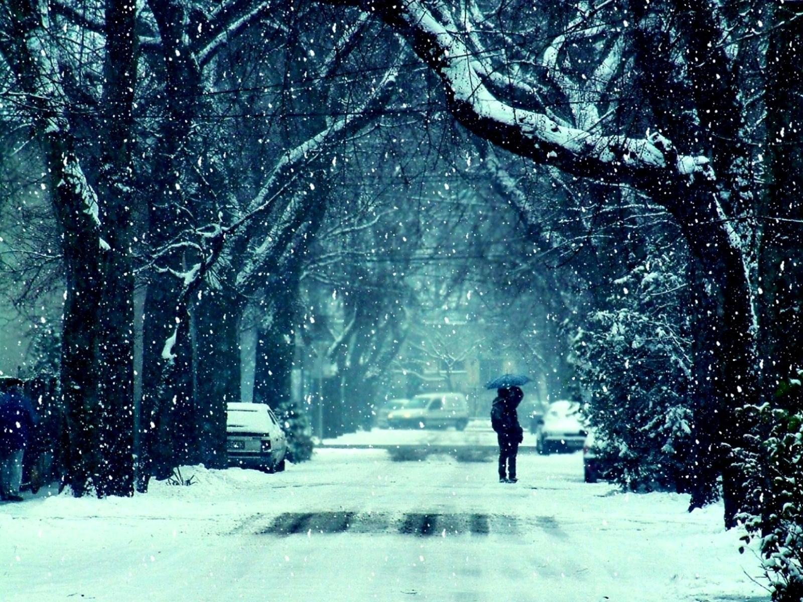 Winter Frost Snow Road Trees HD Wallpaper 1600x1200