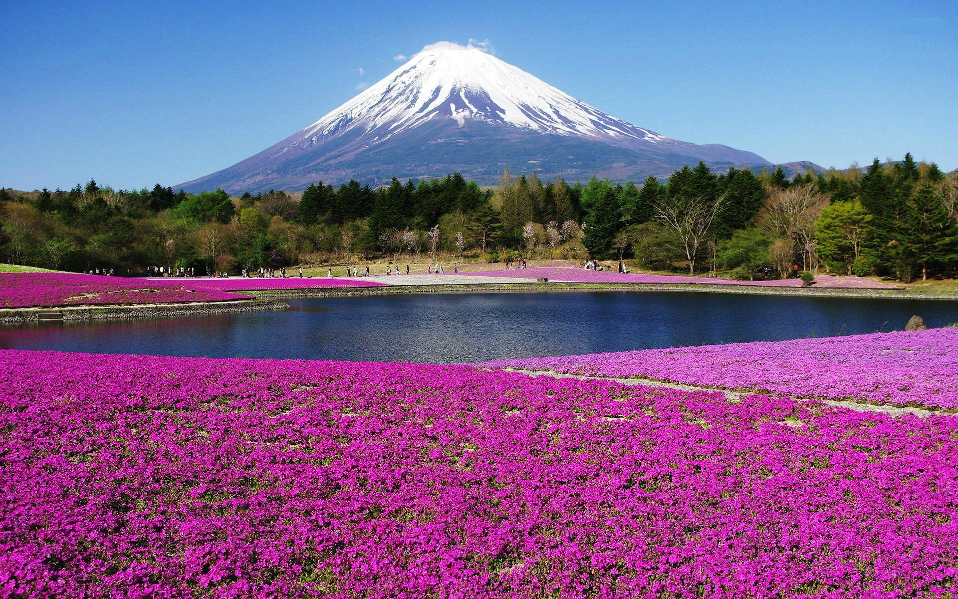 Mount fuji japan   138297   High Quality and Resolution Wallpapers 1920x1200