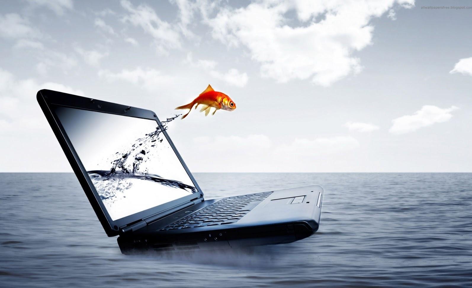 Hd Wallpaper Laptop Wallpapers Download Windows 1594x972
