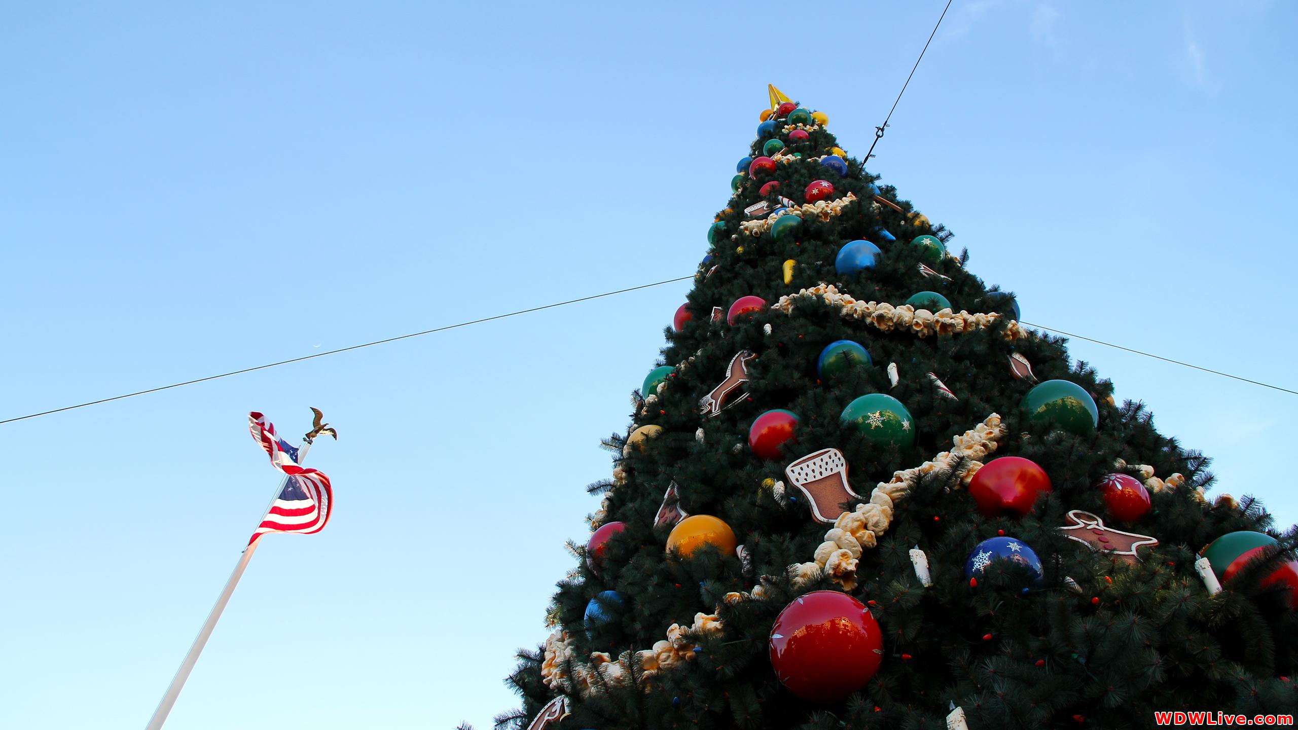 Christmas Decorations Magic Kingdom Christmas tree and the flag of 2560x1440