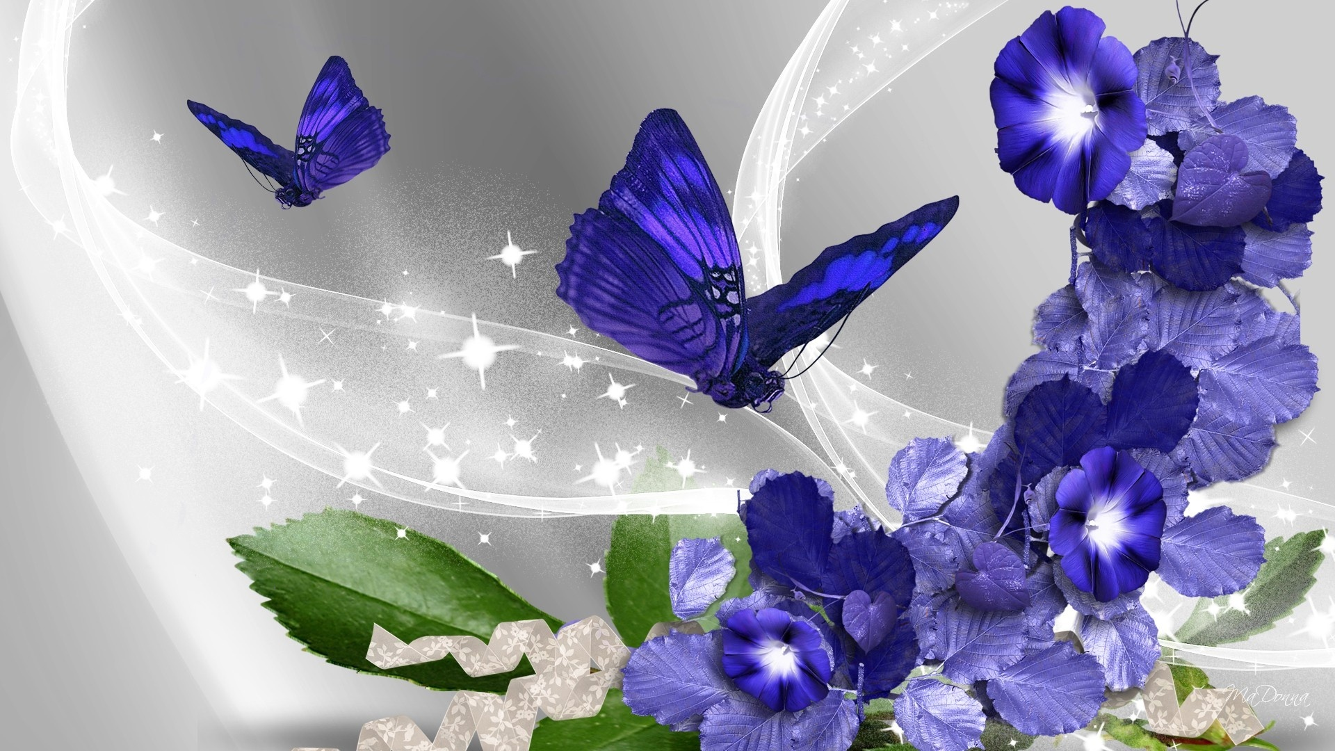 Flower HD Wallpaper Background Image 1920x1080 ID301803 1920x1080
