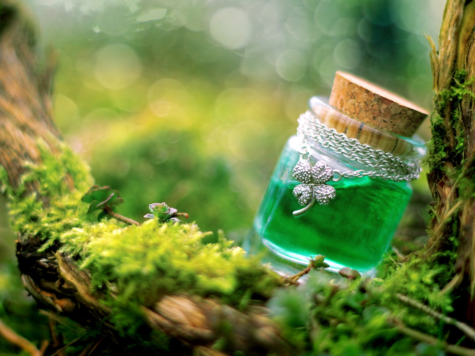 of Luck Wallpapers Potion of Luck HD Wallpapers Potion of Luck 1600x1200