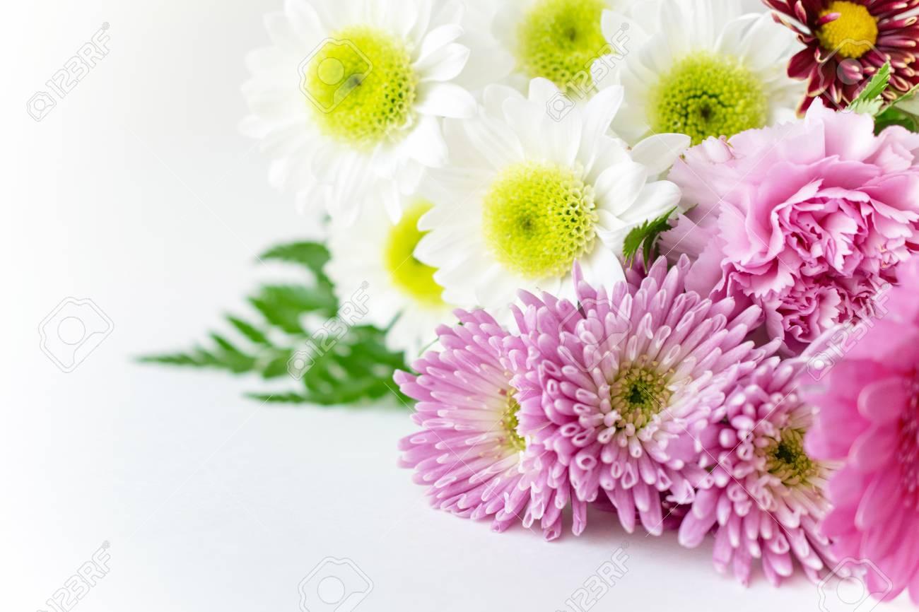 Bouquet Chsysanthemum Mums On White Background Stock Photo 1300x866