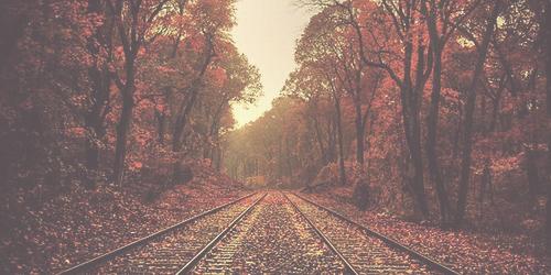 autumn header Tumblr 500x250