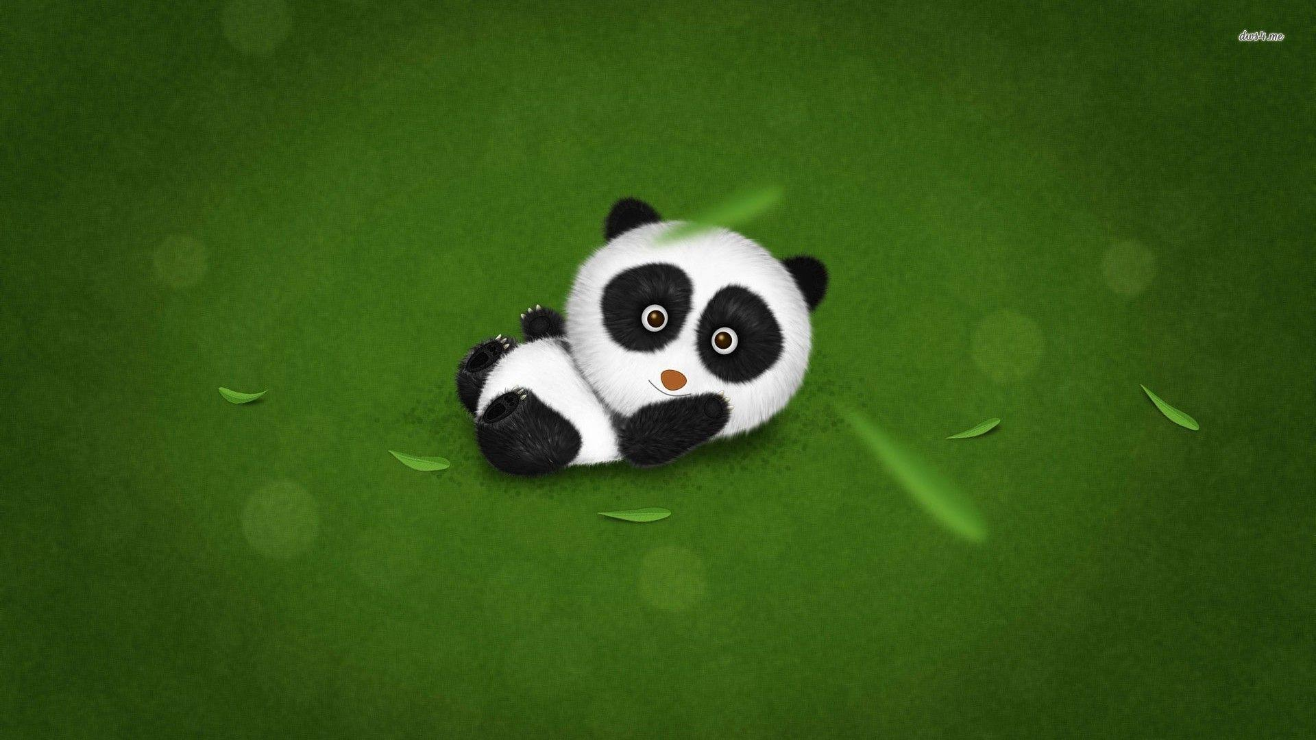 Baby Panda Wallpapers 1920x1080